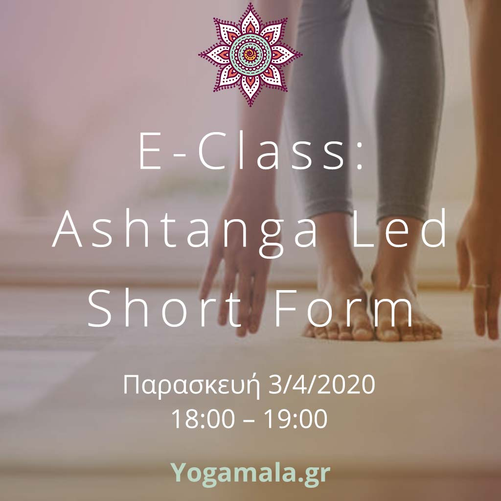 led_short_ashtanga2_insta